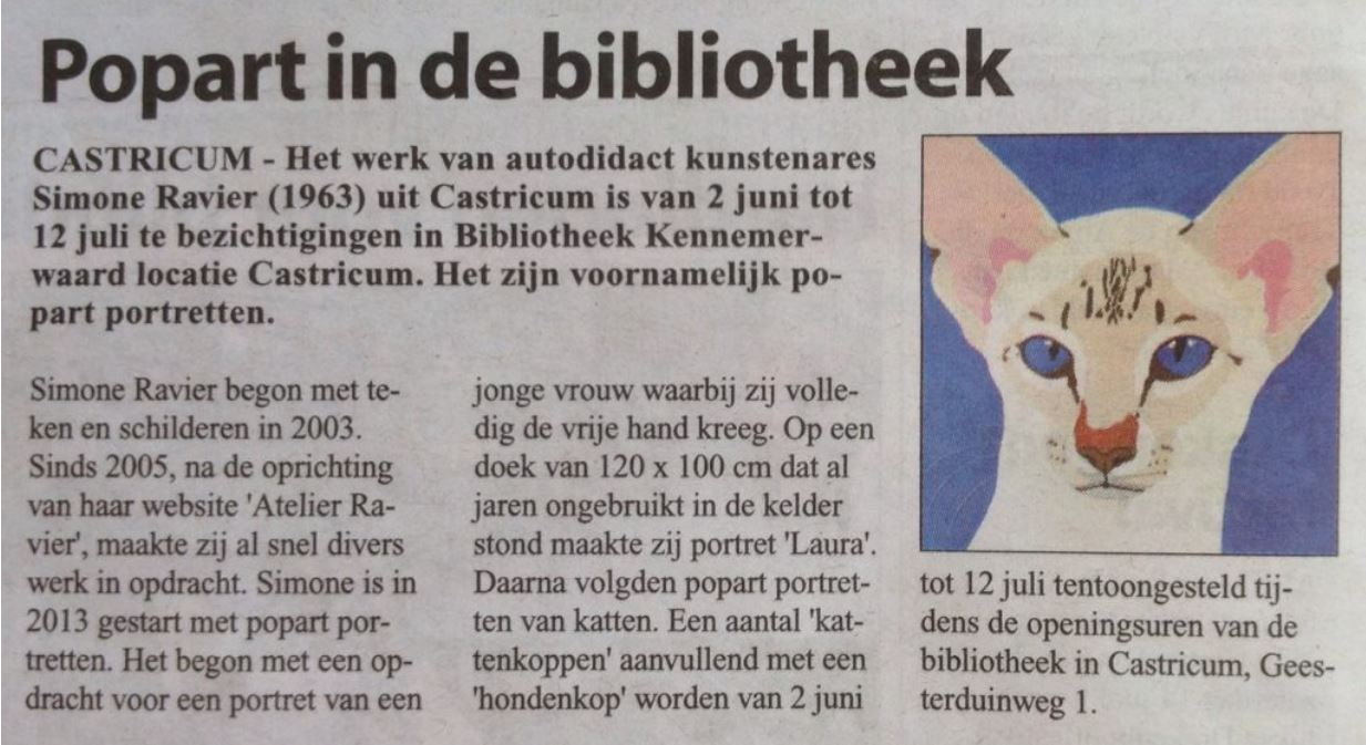 Krantenartikel pop-art in de bibliotheek